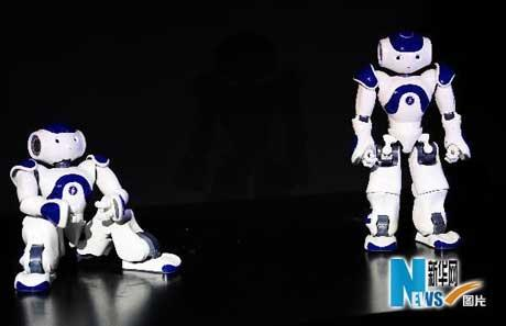 Two humanoid robots dubbed