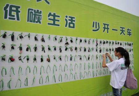 A volunteer hangs a citizen's car keys on a poster board at an activity on environmental protection in Wuhan, central China's Hubei Province, June 5, 2010. World Environment Day was marked amid various programs on Saturday around China. (Xinhua/Hao Tongqian)
