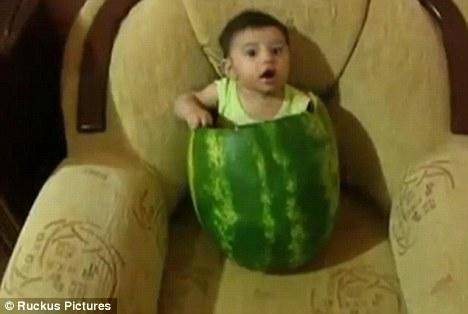 Look at me: The little boy is not distressed by his time spent inside the watermelon.