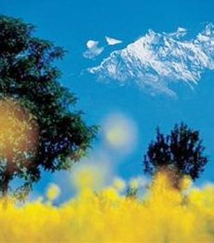 In a bid to attract more foreign tourists to the country and make Nepal Tourism Year 2011 campaign a grand success