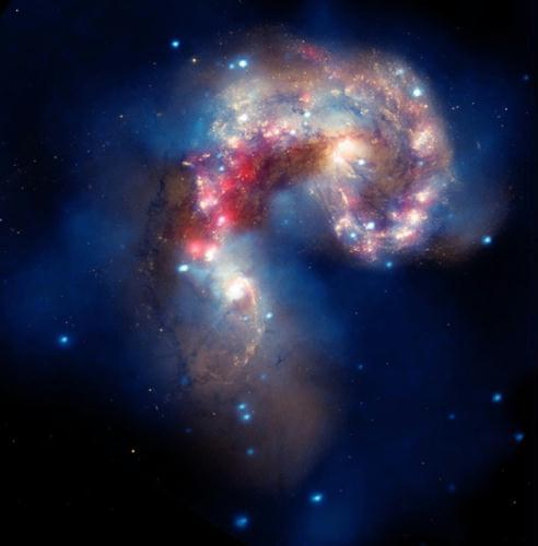 A new image of two tangled galaxies has been released by NASA's Great Observatories. The Antennae galaxies, located about 62 million light-years from Earth, are shown in this composite image from the Chandra X-ray Observatory (blue), the Hubble Space Telescope (gold and brown), and the Spitzer Space Telescope (red). The Antennae galaxies take their name from the long antenna-like arms seen in wide-angle views of the system. These features were produced in the collision.(Photo Source: NASA)