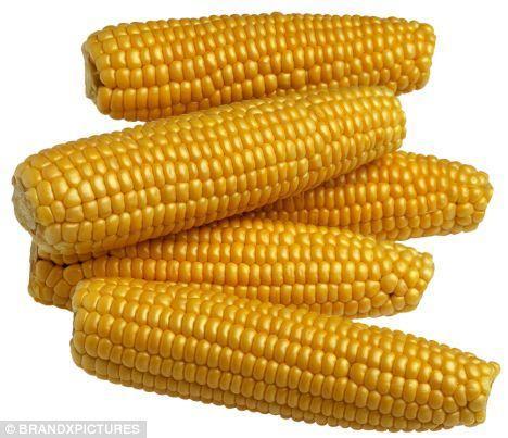 生玉米可以冻上半年也不会坏