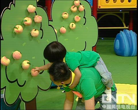 西瓜桔子做游戏猴子运桃子