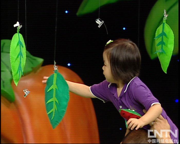 西瓜桔子做游戏树袋熊摘树叶