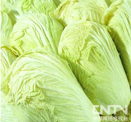 冬吃白菜养颜又护肤