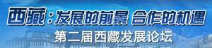 第二届西藏发展论坛