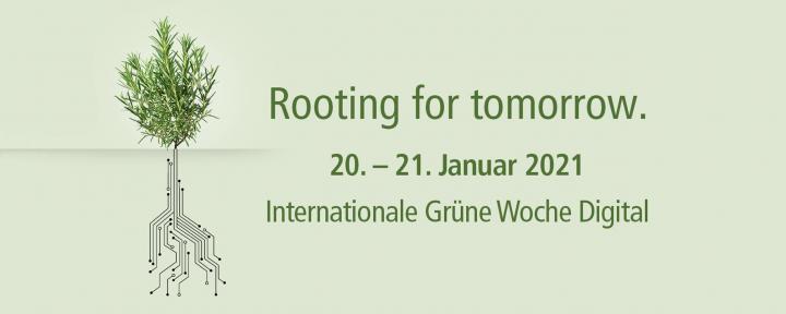 """2021柏林国际""""绿色周""""线上开幕 受疫情影响展期缩水至2天"""