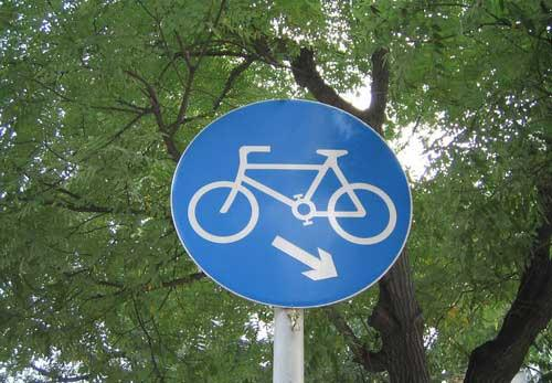 Beijing to set bicycle lanes on roads following Paris example, to promote