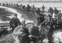 60年前,�装偃f人聚集在�S淮平原殊死搏��,����了人����史上最悲�训囊豁�。淮海有一座高�入云的�S碑,�S碑背后珍藏著�y忘的往事。