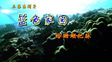 《蓝色家园•给珊瑚把脉》