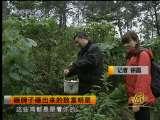 <a href=http://jingji.cntv.cn/20100914/100032.shtml target=_blank>[致富经]砸牌子砸出来的致富明星(2010.9.13)</a>