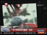 """<a href=http://news.cntv.cn/society/20111031/101742.shtml target=_blank>[超级新闻场]重庆:广场大树竟然成为临时""""住所""""</a>"""