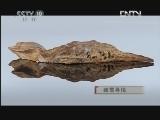 《探索·发现》 20120523 《手艺Ⅱ)——岁月沉香》