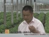 科技苑,蔬菜大棚搬到了亚热带