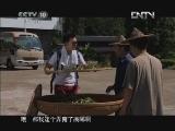 《茶叶之路》 20120715 第七集 炒焙茶香