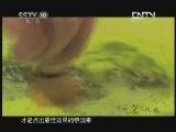 《茶叶之路》 20120716 第八集 武夷茶事