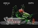 《文化大百科》 20120722 北京料器