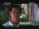 《茶叶之路》 20120729 第二十三集 湖口风情