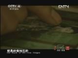 《探索·发现(亚洲版)》 20120804 手艺:通草奇画