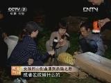 赵海伶养蜂:女孩回山创业遭到质疑之后