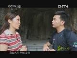 《茶叶之路》 20120826 第四十九集 茶路与丝路的握手