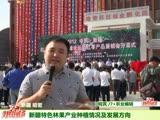 新疆特色林果产业种植情况及发展方向