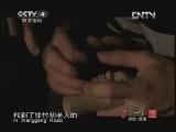 《探索·发现(亚洲版)》 20120927 手艺——千年木偶