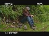 [魅力纪录]鸟瞰地球 第6集 展翅高飞 20121007