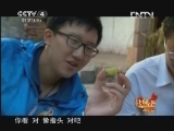 【音画欣赏】《远方的家》北纬30°·中国行视频3 - 飘逸人生 - 逸仙居音画苑