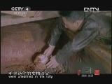 《探索·发现(亚洲版)》 20121030 手艺Ⅱ——花丝镶嵌