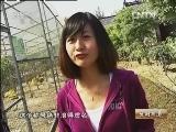 陈培绕珍禽生财有道:农民珍禽大王的千万财富_致富经