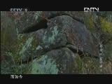 《时代写真》 20121125 寻踪米仓古道(下) 被证明的存在