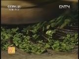 [农广天地]广西六堡茶加工工艺(20121213)
