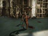 WiiU版《忍龙3》DLC霞姐登场让人窒息