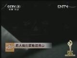 陈亚忠茶叶致富经,2012十大三农创业致富榜样展播(8)胆大媳妇冒险进深山