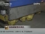 刘新才罐头加工致富经视频,瓶瓶灌灌里的商机