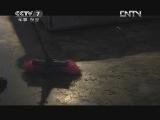 """《中国武警》 20130217 犬宝宝的""""兵爸爸"""""""