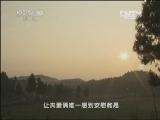 《CCTV-10讲述》 20130328 进城(四)