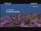 《南太平洋》 20130611 片段 种植珊瑚