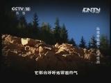 《地理中国》 20130627 秘境零距离-洼地怪洞