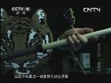 活力中国·百变天后 潘晓婷 00:24:15