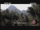 黄山 20130727 问佛