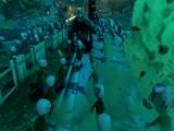 《植物大战僵尸:花园战争》2013科隆游戏展预告
