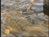 水产养殖农广天地,金鳟鱼养殖技术
