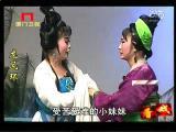 《龙凤环》第十三场 看戏 - 厦门卫视 00:24:16