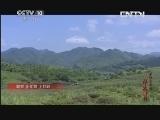 《探索发现》 20131102 不能忘却的伟大胜利 第九集 鏖战上甘岭