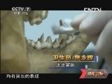 《谁是终极英雄》 20131110 训犬高手大比拼