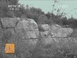 [农广天地]于家石头村(20140126)