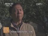 [农广天地]观赏百合品种介绍(20140305)