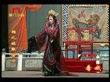 《杨九妹取金刀》第八场 看戏 - 厦门卫视 00:25:07